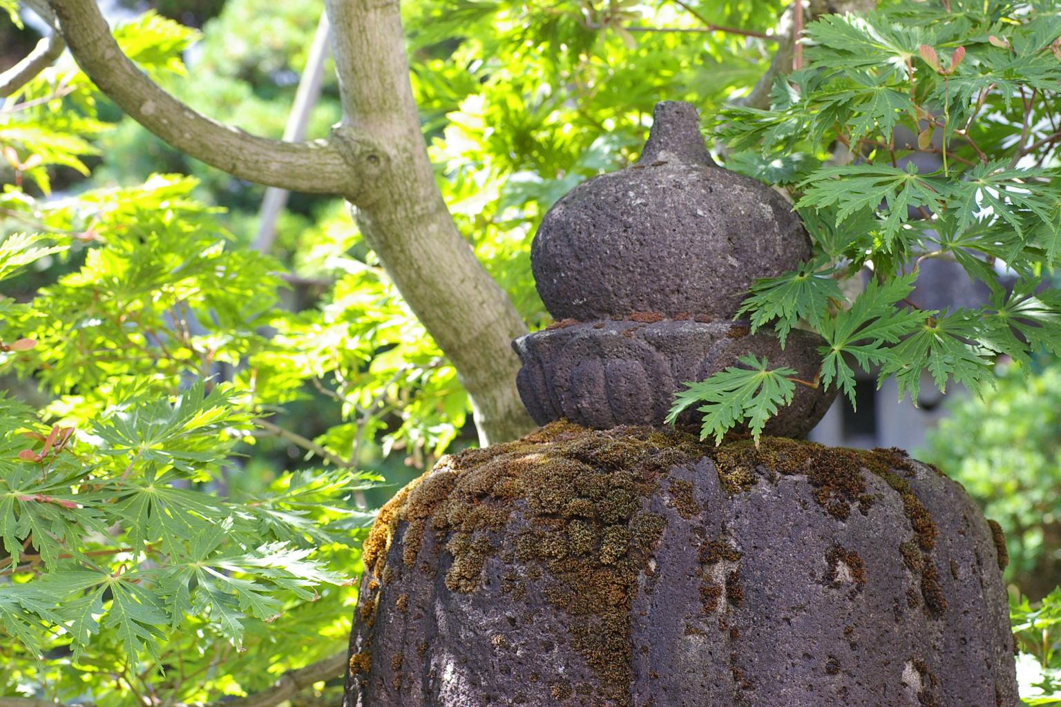 石灯籠と初夏の風景